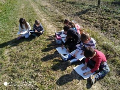 L'importanza dell'educazione nella natura...